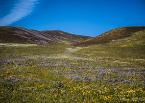 Top 10 Hidden Desert Getaways in Southern California